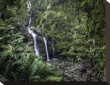 Waikani Falls Hana Highway I