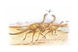 Illustration of Gallimimus Catching Insects
