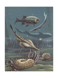 Prehistoric Fishes  Underwater View  Illustration
