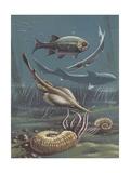 Prehistoric Fishes  Underwater View  Illustration