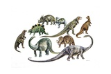 Various Dinosaurs  Illustration