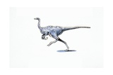Illustration of Archaeornithomimus