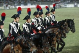 Italy  Milan  Civic Arena  Carousel of Police on Horseback