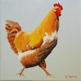Blonde Chicken