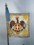 Flag of Colonel of Italian Cavalry School  19th Century