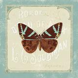 Parisian Butterfly II