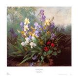 Landscape with Irises
