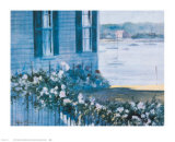Harbor Roses  1981