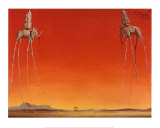 Les éléphants, 1948 Reproduction d'art par Salvador Dalí