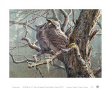 Silent Forest (Great Horned Owls)