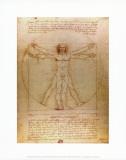 L'Homme de Vitruve, vers 1492 Reproduction d'art par Leonardo Da Vinci
