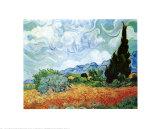 Champ de blé et cyprès Reproduction d'art par Vincent Van Gogh