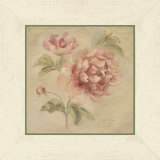 Coral Rose on Antique Linen