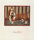 Basset Hound Reproduction d'art par Lanny Barnard
