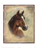 Equestrian Delight