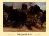 Bear Bull Brawl