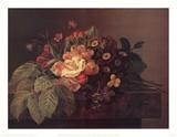 Wild Roses Aricula Pansies
