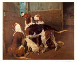 Hounds by a Stable Door