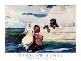 Bassin de tortues Reproduction d'art par Winslow Homer