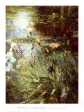 Water Garden Symphony II