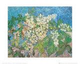 Blossoming Chestnut Branches, c.1890 Reproduction d'art par Vincent Van Gogh