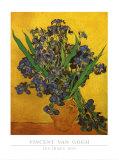 Vase of Irises Against a Yellow Background  c1890