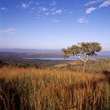 Overlooking Lake Ihema  Akagera National Park  Rwanda