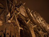 Gargoyles Leer Down From the Walls of Notre Dame De Paris