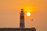 Birds Alight at the Base of the Extremo Molo De Abrigo Lighthouse at Sunset