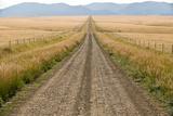 A Road Cuts Through a Prairie in the Crazy Mountains
