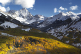 Sunlight on Golden Aspen Trees and Snow-covered Mountains