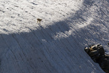 A Mountain Goat Atop a Snow-covered Mountain Ridge