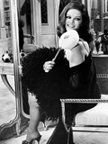 Claudia Cardinale  1965