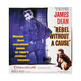 Rebel Without a Cause  1955  Directed by Nicholas Ray
