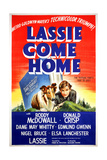 """Lassie Come Home"" 1943  Directed by Fred Wilcox"