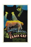 "The House of Doom  1934  ""The Black Cat"" Directed by Edgar Ulmer"
