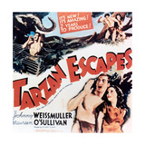 "The Capture of Tarzan  1936  ""Tarzan Escapes!"" Directed by Richard Thorpe"