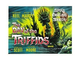 "Invasion of the Triffids  1962  ""The Day of the Triffids"" Directed by Steve Sekely"