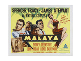 """East of the Rising Sun  1949  """"Malaya"""" Directed by Richard Thorpe"""