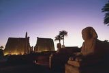Ancient Egyptian Temple Complex and Monumental Sphinxes
