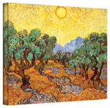 Vincent van Gogh 'Olive Trees' Wrapped Canvas