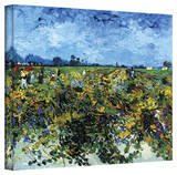Vincent van Gogh 'Green Vineyard' Wrapped Canvas Art