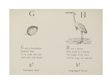Gooseberry and Heron Illustrations and Verse From Nonsense Alphabets by Edward Lear