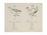 Goose and Hen Illustrations and Verses From Nonsense Alphabets Drawn and Written by Edward Lear