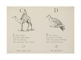 Camel and Dove Illustrations and Verse From Nonsense Alphabets by Edward Lear