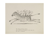 Monkeys Riding a Zebra  Nonsense Botany Animals and Other Poems Written and Drawn by Edward Lear