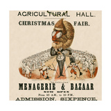 Agricultural Hall  Islington