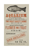 Royal Aquarium  Westminster  Two Great Variety Shows Daily  Artificial Flower and Fruit Show