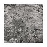Petroglyphs Volcanoes National Park  Hawaii 1988