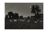 Moonlight  Avebury 1974 From the Ridgeway Series